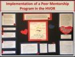 Implementation of a Peer Mentorship Program in the HVOR